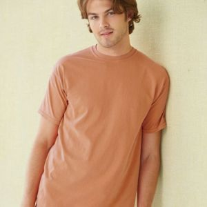 Garment Dyed Heavyweight Ringspun Short Sleeve Shirt Thumbnail